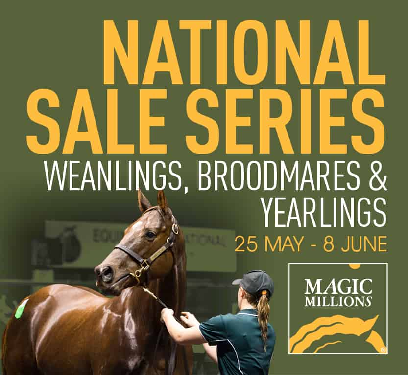 Magic Millions Web Banners 1